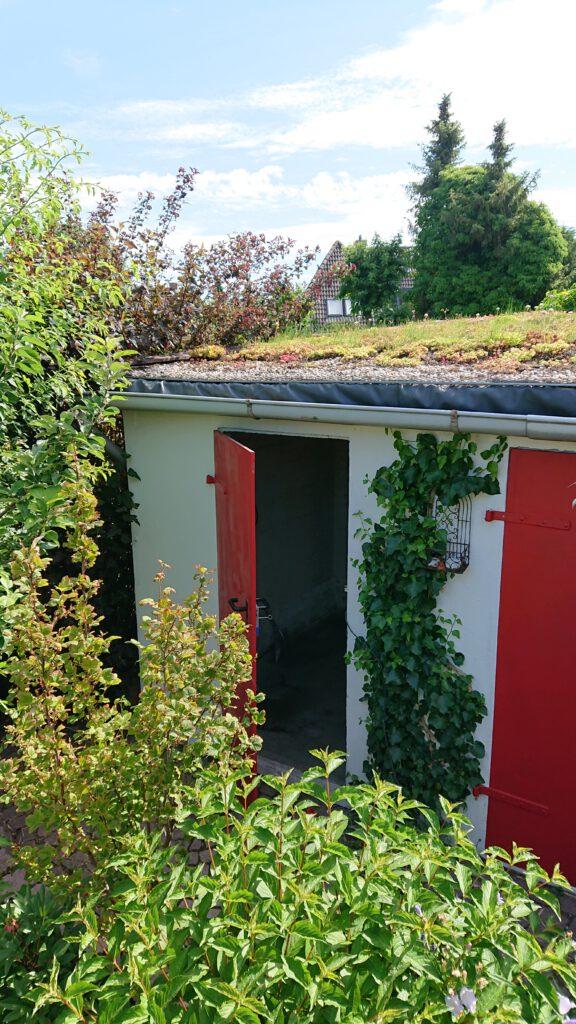 Schuppen-Tür im grünen Garten